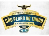 Festa de Peão de São Pedro do Turvo 2018 – Contador de Fluxo de Pessoas